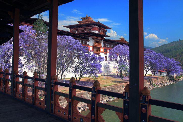 8.-Punakha-Dzong-Bhutan - Adventure Woman